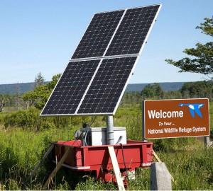 Solpaneler som bidrar till ett energieffektivare samhälle. Foto: USFWS/Rachel Molenda